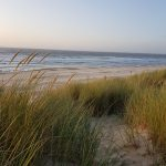 Meeresblick und Gras